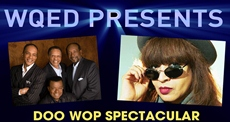 WQED Presents Doo Wop Spectacular